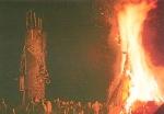 Afrikaner 1996